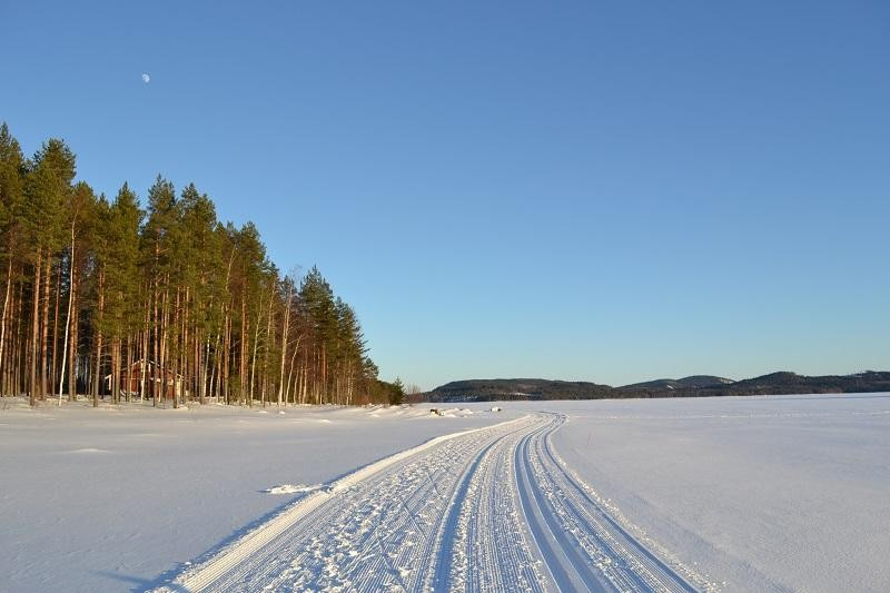 Cross-country ski tracks on frozen lake